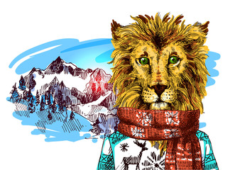 Lion in knitted sweater