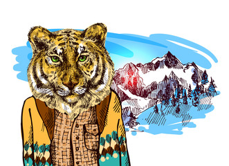 Tiger in knitted sweater
