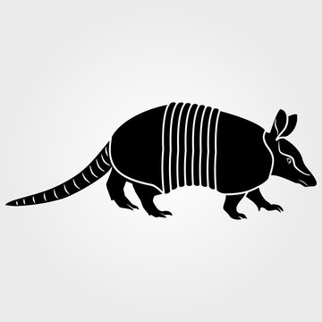 Armadillo icon isolated on white background.