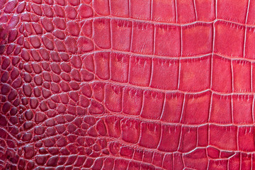 Red scales macro exotic background, embossed under the skin of a reptile, crocodile. Texture genuine leather close-up, fashion trend