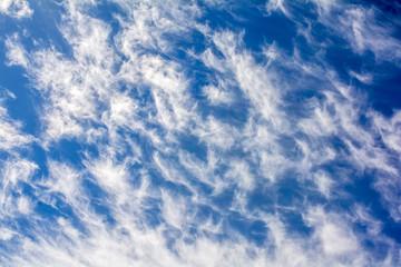 Cirrus clouds in the blue sky