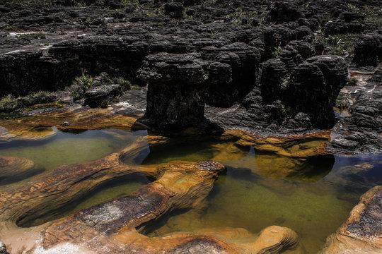 Los Jacuzzis del Monte Roraima