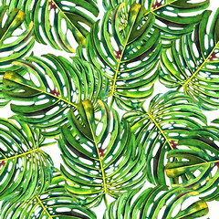Seamless floral pattern with beautiful watercolor monstera leaves. Jungle foliage on white background. Textile design.