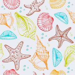 Seashells, Starfish. Vector seamless pattern. Hand drawn sketch.