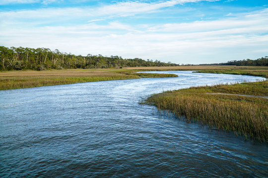a protected water inlet on an island is being re-introduced with clams in a conservation project