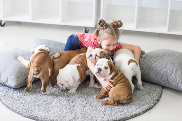 Little girl sitting on the floor and takes care of the puppies bulldog