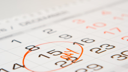 Signied a pay day on a calendar by red pen