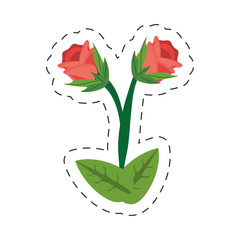 cartoon rose flower image vector illustration eps 10