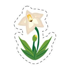 cartoon gladiolus flower image vector illustration eps 10
