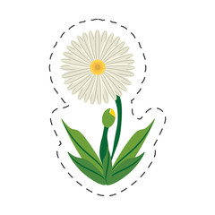 cartoon daisy flower image vector illustration eps 10