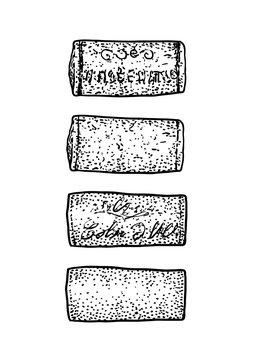 Wine cork illustration, drawing, engraving, ink, line art, vector