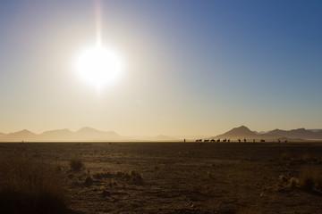 Sonnenaufgang in der Namib-Wüste, Namibia