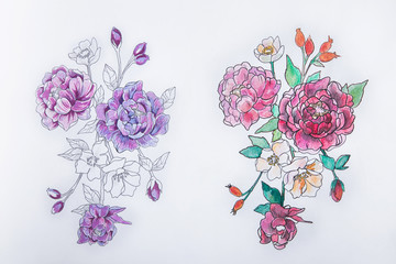 Sketch of red and purple peony on a white background.
