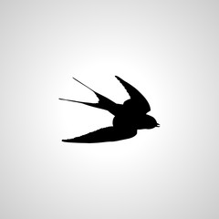 swallow icon