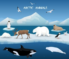 Collection of arctic animals in a background of arctic scenery