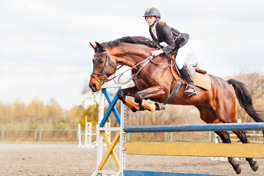 Young horseback sportsgirl jumping over obstacles on show jumping competition
