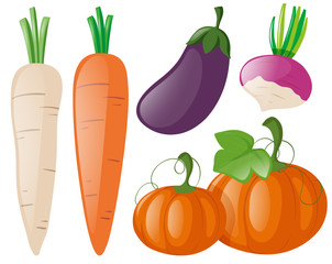 Different types of fresh vegetables