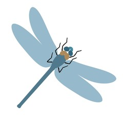 Flat dragonfly vector illustration