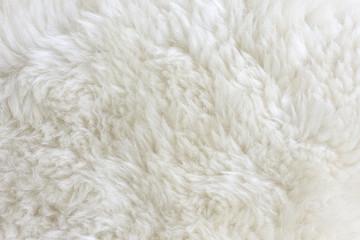 Fur Texture./Fur Texture  Wall mural