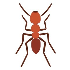 Ant vector illustration isolated on white