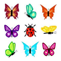 Schmetterlinge Marienkäfer isoliert Kollektion