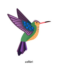 Colibri - very small amazing birds, resemble bees.