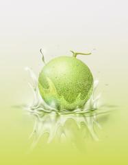 Melon cantaloupe drop on juice splash and ripple, Realistic Fruit and yogurt, transparent, vector illustration