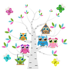 Сolorful owls on the tree  with butterflies on a white background
