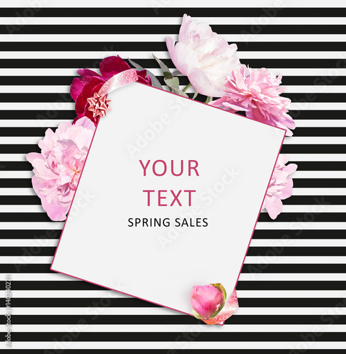 Flower Banner On The White Black Striped Background Pink Peonies
