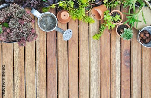 Collection de plantes succulentes sur terrasse en bois imagens e fotos de stock royalty free - Foto terrasse bois ...
