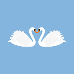 White swan illustration