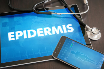 Epidermis (cutaneous disease related) diagnosis medical concept on tablet screen with stethoscope