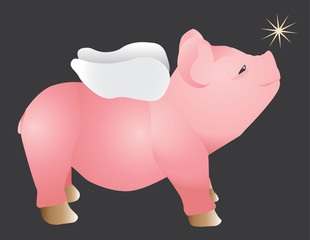 Pink pig with wings looking up a shining star abstract vector illustration