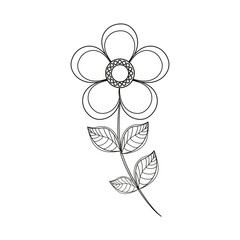 magnolia flower decoration line vector illustration eps 10