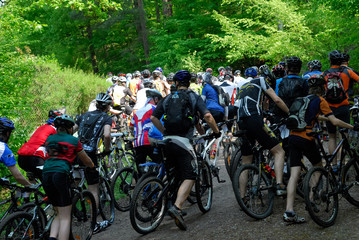 Peloton crowd of bicycle riders racers from back in forest hill section of a race