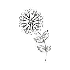 flower spring season line vector illustration eps 10