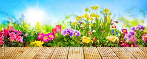 Spring flowers in garden stock photo and royalty free images on spring flowers in garden mightylinksfo