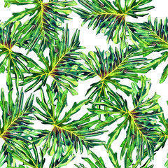 Seamless floral pattern with beautiful watercolor philodendron leaves. Jungle foliage on white background. Textile design.