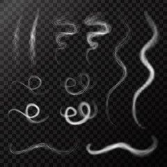 Vector realistic smoke effects on the transparent background.