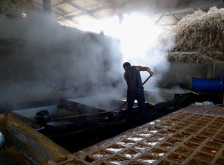 Man working hard in a hot steam filled shed, sugar refinery.