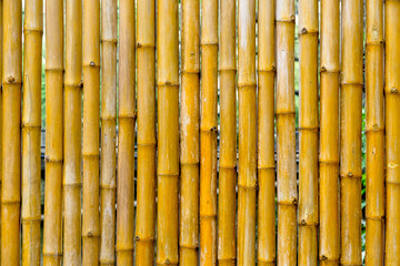 Bamboo wall, Bamboo fence background.