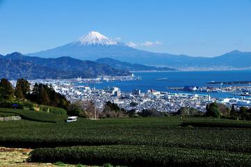 静岡県静岡市 日本平からの茶畑と富士山