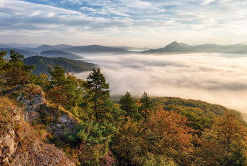 Landscape Beautiful autumn morning above deep forest valley.