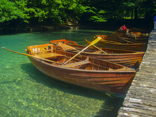 wood boat dock at the shore