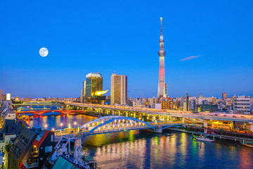 Wall Mural - Tokyo skyline with the Sumida River