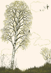 Spring landscape with birch tree silhouette. All objects are on separate layers
