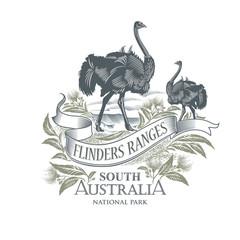 Страус, Национальный парк Флиндерс-Рейнджиз, Южная Австралия, иллюстрация, вектор