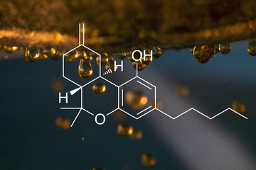 THC chemical breakdown on a photograph of Oil