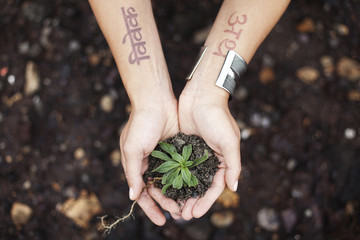 A woman tattooed hand's holding soil and a young plant