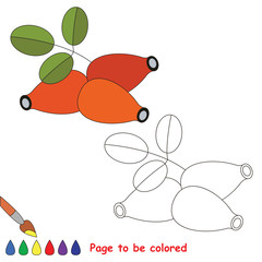 Coloring kid game. Educational page to be colored.